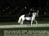 salon du cheval 2011 nuit du cheval Mario Luraschi dressage des chevaux