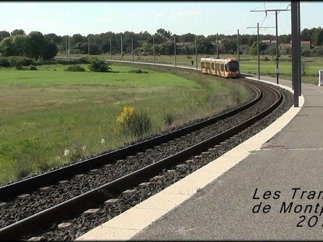 Les Tramways de Montpellier 2011