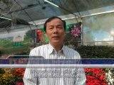 Việt nam ngày nay (03-01-2012)