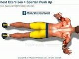 Spartan Push Up 300 workout