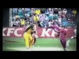 Live Stream - Australia Domestic Cricket Schedule - T20 Melbourne Renegades v