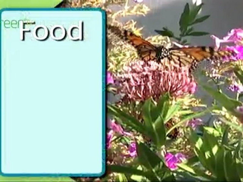 Certified Wildlife Habitats - Why Garden for Wildlife?