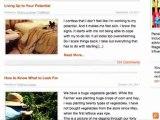 TimeDog.com Amazing Blogs - Penelope Trunk Blog