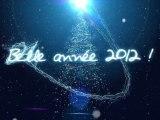 CS Développement France vous présente ses meilleurs voeux pour une année 2012 toute en lumière !