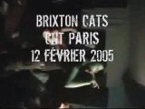 Brixton Cats - Career Opportunities