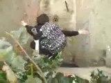 0476 - Skateur sauvé par son sac à dos