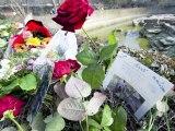 Denkmal für Knut zeigt berühmten Eisbären als Träumer