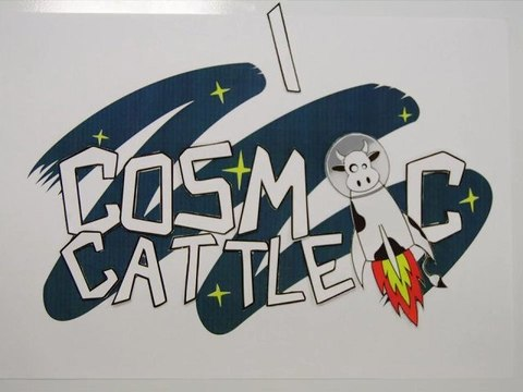 Motion Title Cosmic Cattle