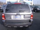 2009 Ford Escape for sale in Indianapolis IN - Used Ford by EveryCarListed.com