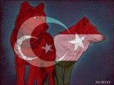 Türk-Macar Dostluğu-©-Török-Hungarian(Magyar) Baratsag-(Turkey-Hungary)