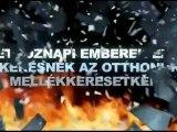 STIFORP HUNGARIAN Video- GYORS PROFIT