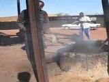 04-PELLE02-MAH00452-Sevare-Travail d'un chargement de sable noir_converted