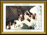 ©MESA VERDE POEME THOMAS ANDRE ©PHOTOS-PHOTOS -PEINTURES MARTINE ANCIAUX©