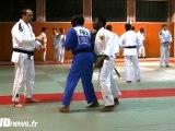 Judo : Clarisse Agbegnenou défendue par son club