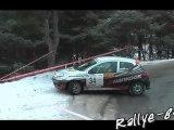 Rallye hivernal des Hautes Alpes 2012