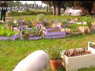 Una visita all'accampata degli indignati di Caracalla
