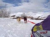 Mister Sybelles #09 - Course de mushers