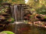 Naturescapes - Landscaping Wayne, Malvern & King of Prussia