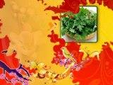 Tiếng Việt: Bài 4: Bài 5 - Bé đã học bài gì