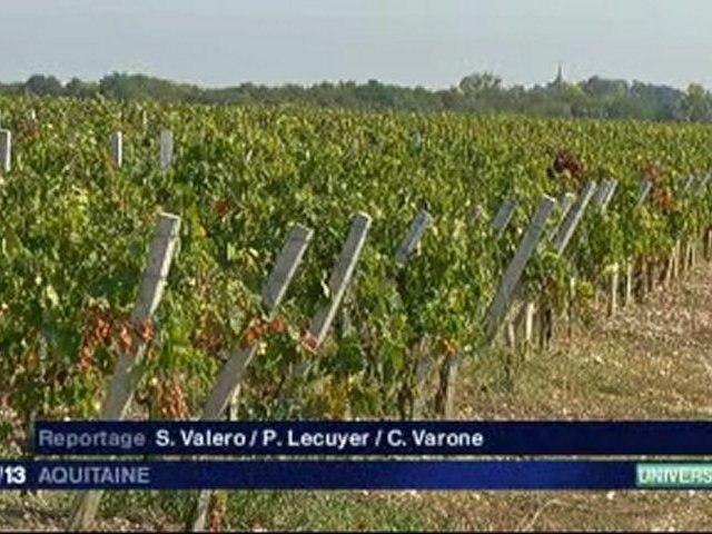 05/10/11 -  Vigne et Vin
