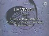 Le Vivant (Sciences Et Philosophie)