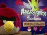 """Le jeu à succès """"Angry Bird"""" à la conquête de Facebook"""