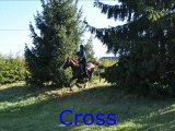 Centre équestre et poney club de La Motte Feuilly