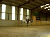 video jamou galop cercle droit