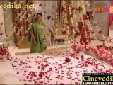 Pavitra Serial on 23-02-2012 (Feb-23) Maa TV