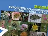 Exposition des photographies de Jean-Claude Forget