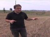 Agroforesterie : produire et protéger - Arbre et paysage 32