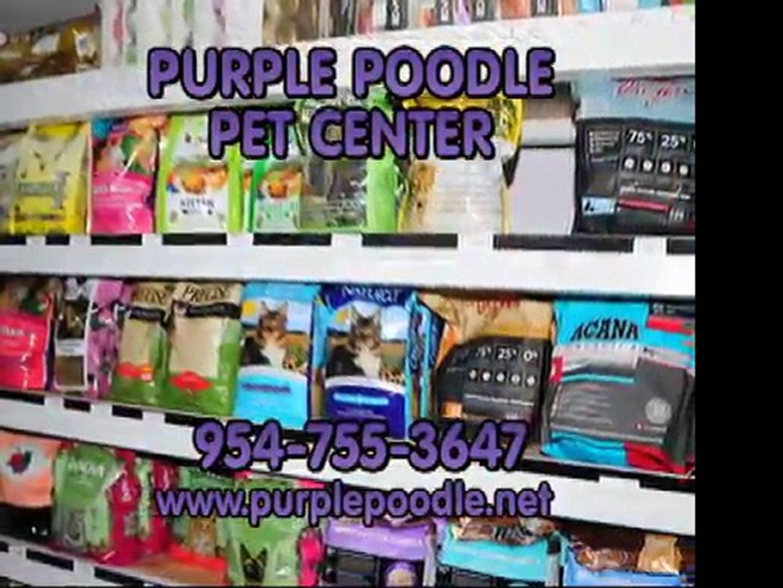 PURPLE POODLE  Purple Poodle Pet Center, 954-755-3647 Wheaten Groomer Shitzu, Poodle, Care. Coral Sp
