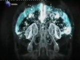 Memoria motora: Cerebro inconsciente
