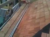 Cedar Shingle Roof using Copper Flashings