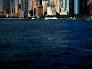 Nouveau WTC