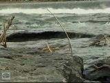 Eau qui coule 6 - Relaxation ZEN - Hypnosis water - LaRPV 2011