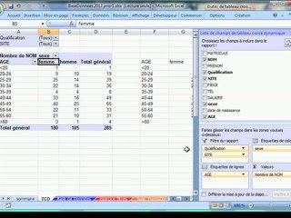 Excel 2007-2010 - Pyramide d'âge