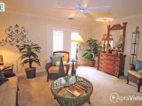 South Beach Apartments in Virginia Beach, VA - ForRent.com