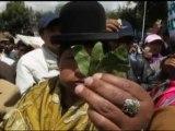 Seguidores de Evo Morales mastican hoja de coca para apoyar campaña en la ONU