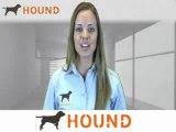 Associate Brand Manager Jobs, Associate Brand Manager Careers, Employment | Hound.com
