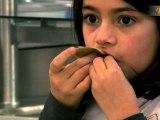 bio dans les cantines de saint etienne100% de produits bio dans les cantines scolaires : un objectif inatteignable ?