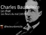 Charles Baudelaire - Le chat - Les fleurs du mal