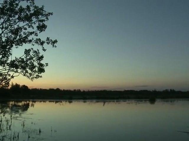 Camargue : le développement durable d'un territoire rural, un exemple innovant  au cœur du Parc naturel régional de Camargue