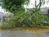 Storm zorgt voor overlast in de provincie - RTV Noord