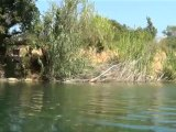 Ballade pédagogique sur l'Argens - la Nature en danger - septembre 2012