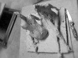 Esquisses terre sculpture femmes allongées modelage argile blanche