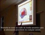 Neurologia 12 - Musica y Lenguaje Funcion del area de Wernicke - Prof Manuel Lafarga