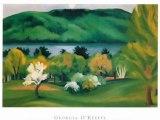 Georgia O'Keeffe paintings Villa-Lobos por Joao Carlos Assis Brasil