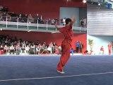 Championnat de France 2012 de Wushu Taolu / Chang Quan Seniors - Parthipan Rajakumar
