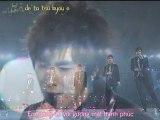 [Vietsub + Kara ]DBSK - Doushite Kimi wo Suki ni Natte Shimattandarou- ( Live at Tokyo Dome )